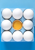 White raw chicken eggs on colorful blue background - 196283018