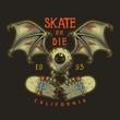 Colour emblem design with skate