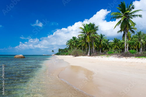 Fotobehang Tropical strand tropical beach in Sri Lanka . Summer holiday and vacation concept for tourism.