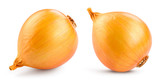 Onion bulb isolated. Onion on white background. With clipping path. Full depth of field.