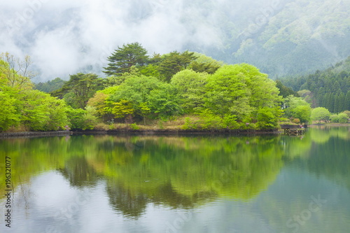 Staande foto Wit 新緑の田貫湖、静岡県富士宮市にて