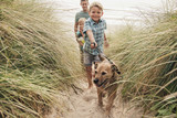 Walking the Dog at the Beach - 196376672