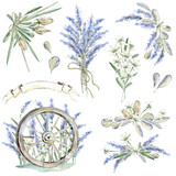 Set of hand drawn watercolor clipart. Provence atmosphere, laven