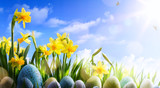 art Easter background; Spring flowers and easter eggs - 196381450
