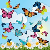 background with butterflies, daisies, grass