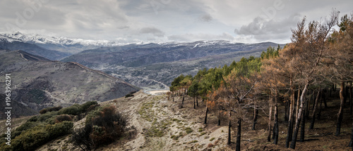 Deurstickers Panoramafoto s montaña