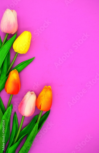 Leinwanddruck Bild red and pink tulips.flower background