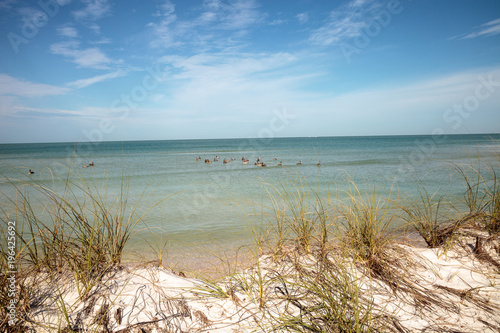 Napels White sand beach and aqua blue water of Clam Pass in Naples, Florida