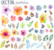 Colorful floral collection with flowers, leaves and berries - 196437600