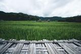 Rice field A wooden bridge on a rice field travel pai thailand
