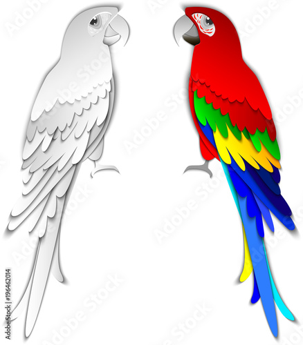 Fototapeta Collection of tropical parrots. Vector design isolated elements. Paper cut out style.
