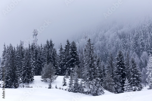 Keuken foto achterwand Blauwe hemel Winter landscape with trees covered with snow in a mountain valley in Romania