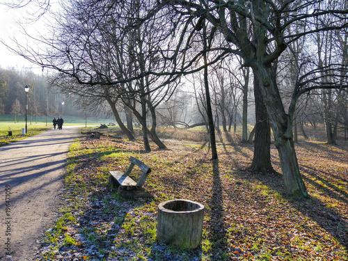 Tuinposter Weg in bos złota jesień w parku