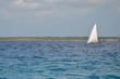 Voilier de Zanzibar