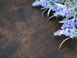 lavender flowers on dark wooden background