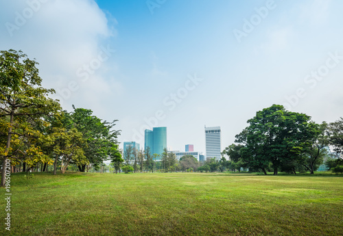 Staande foto Bangkok Green grass field with building in Public Park