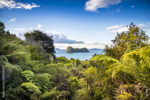 Foto Spatwand Cathedral Cove Overlooking the Pacific Ocean as the sun sets spectacularly over Cathedral Cove on the Coromandel Peninsula on the North Island of New Zealand near Auckland.
