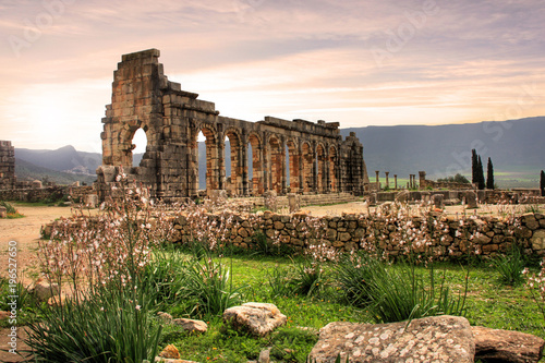 Fotobehang Marokko Volubilis, Roman city of antiquity in Morocco