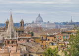 Rome Aerial View From Pincio Viewpoint - 196528217