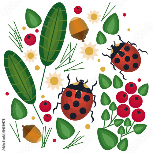 Vector flat graphick with forest element and ladybird.Traditional style with forest berries and   deep, blueberries, acorn, ladybird, leaf, dot. Forest fairy-tale isolated vector art.