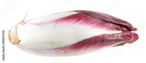 Keuken foto achterwand Verse groenten Red Belgian endive or witloof isolated on white background