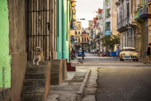 Aluminium Smalle straatjes Havana Street