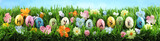 Bright colorful Easter eggs on green grass with flowers against blue sky - 196548699