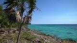 The beautiful Playa Giron coast in Cuba. - 196552414