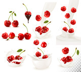 Set of ripe sweet cherries with leaves and splash of milk. Vector.