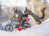 red squirrels with a bike with eggs and snow