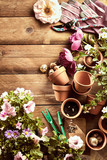 Garden flat lay with flowers, pots and secateurs