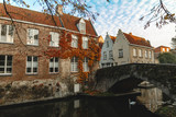 swan floating on calm water of canal and beautiful traditional buildings with bridge in bruges, belgium