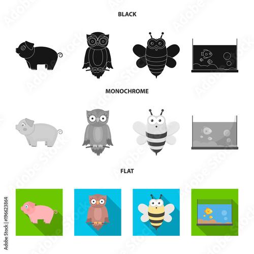 Aluminium Uilen cartoon An unrealistic black, flat, monochrome animal icons in set collection for design. Toy animals vector symbol stock web illustration.