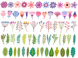 Vector floral set. Flower, blossom, leaf, herb isolated