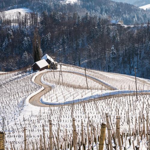Famous Heart shaped wine road in Slovenia in winter, Heart form - Herzerl Strasse, vineyards in winter, Spicnik,Styria,Slovenia.