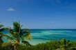 Coconut trees and the beautiful clear waters of the Florida Keys in Bahia Honda