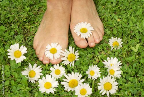 Canvas Pedicure Healthy feets, gesunde Füße, Füße, gesund, Füsse, Wiese, Margeriten, Textraum, copy space