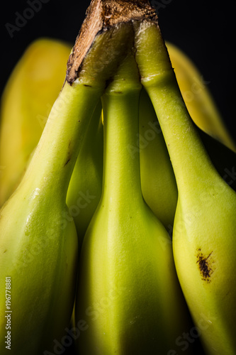 Close up of  the back of bunch of bananas showing stems in threes. - 196778881