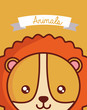 Cute animals design with lion face background, colorful design vector illustration