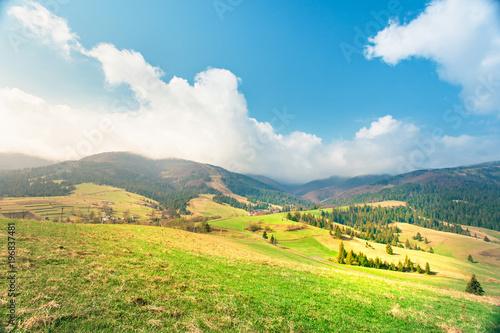 Fotobehang Zwavel geel Sunny spring day. Green mountain valley.