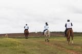 Jinete a caballo paseando por el campo. Clases de equitación.
