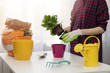 woman planting flower in pot at home