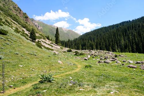 Fotobehang Pistache Beautiful mountain landscape in Karakol, Kyrgyzstan