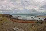 Atlantic Ocean near Le Marin - Martinique FWI - 196874401