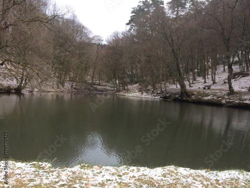 Idylle am Waldsee mit Schnee