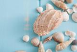 Seashells on blue wood, sea vacation background - 196876682