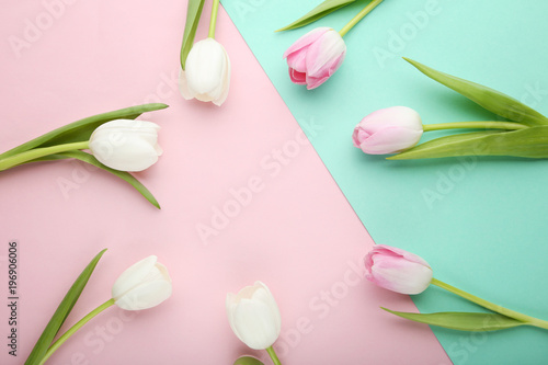 Bouquet of tulips on colorful background