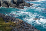 荒波に洗われる岩礁3