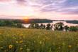 Minnesota Wild Flowers and Lake