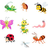cute insect collection set - 196961653